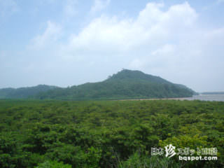西表島レポート3(山の遊び編)【西表島】