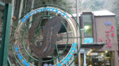 極寒の赤目の滝と山椒魚「日本オオサンショウウオセンター」【三重】