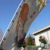 ご神体は巨大な男根型みこし「田縣神社豊年祭 2006」【愛知】