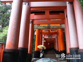不思議な赤の迷宮・4キロ続く千本鳥居「伏見稲荷大社」【京都】