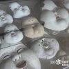 現代人には理解不能すぎるおかめ伝説「千本釈迦堂・大報恩寺」【京都】