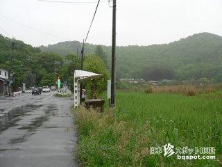 タクシーに乗った女が消える京都の心霊スポット「深泥池」【京都】