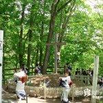 キリストの墓でナニャドヤラ「キリスト祭り」【青森】