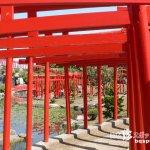 まるで夢の風景! 赤い鳥居のトンネルを進め「高山稲荷神社」【青森】