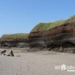 珍スポットじゃなくて単なる美しい海岸でした「埋没林」【青森】