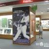 夢の館「松井秀喜ベースボールミュージアム(旧・松井秀喜野球の館)」【石川】