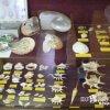 3万点の貝コレクション「貝寺(本覚寺)」【和歌山】