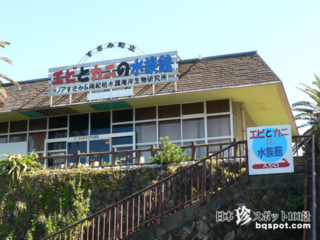 プリンセステンコー林家一門も推薦「エビとカニの水族館」【和歌山】