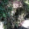延長100キロ・謎の古代遺跡か?「猪垣(ししがき)」【和歌山】