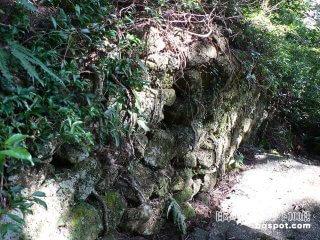 延長100キロ! 山中にある謎の古代遺跡?「猪垣」【和歌山】