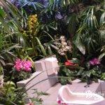 ここはジャングル!? 日本一きれいなトイレ「いっぷう」【三重】