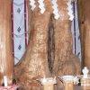 女性器霊木にニッコリ祈る「夫婦木神社姫の宮」【山梨】