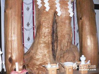 女性器そっくりの巨木がご神体の神社「夫婦木神社姫の宮」【山梨】