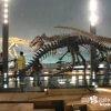 恐竜王国・福井のスーパーゴージャス博物館「恐竜博物館」【福井】