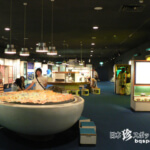 至極まっとうごく普通の博物館「瑞浪市化石博物館」【岐阜】