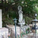 ペットの名前が書かれた卒塔婆が並ぶお寺「動物観音三仙院」【岐阜】