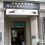 虫に関するトリビア満載のレトロ博物館「名和昆虫博物館」【岐阜】