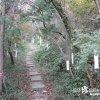 エロ俳句があちこちに吊るされている「木花開耶媛神社」【長崎】