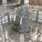 君が代のさざれ石っていったいどんな石?「吉備津彦神社」【岡山】