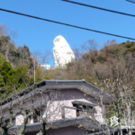 大船駅の向こうの白い顔「大船観音」【神奈川】