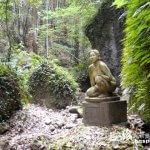 シダが生い茂る『秘密の花園』のような庭園「伊尾木洞」【高知】