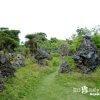 天啓を得て30年、一人で作ったパワースポット「石の庭」【宮古島】