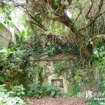 美しすぎる墓3つと離島の歴史「豊見親墓」【宮古島】