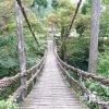 「吊り橋理論」で本当に恋人ができるのか?「かずら橋」【福井】