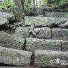 よじ登る小人!? メジャー観光地の小ネタ「和歌山城」【和歌山】