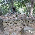 卑弥呼の墓はなんと徳島にあった!?「八倉比賣神社」【徳島】