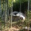 インディ気分で冒険!巨大石造物「飛鳥奇石群(4)益田岩船」【奈良】