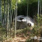 探検&冒険! 巨大石造物「飛鳥奇石群(4)益田岩船」【奈良】