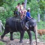 ゾウに乗ってトレッキング「ナムアン・サファリパーク」【タイ】
