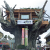 (閉鎖)ツリーハウスの上のレストラン「がじゅまる」【沖縄本島】