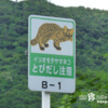 とびだし注意! 東洋のガラパゴスの道路「西表島道路」【西表島】