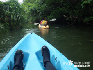 川口浩的ジャングル探検「カヌー&トレッキングツアー」【西表島】