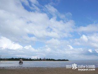 水牛にゆられて渡る南の楽園と珍オブジェの島「由布島」【西表島】