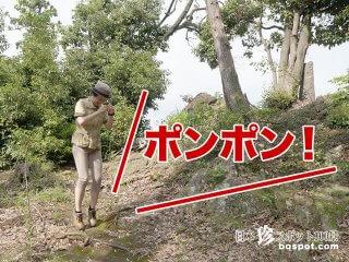 財宝が埋まっている場所がポンポンと鳴る!?「ポンポン山」【埼玉】