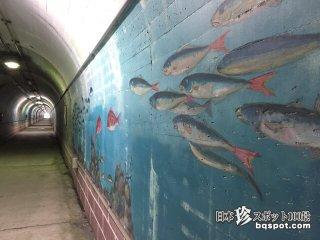タイヤヒラメが舞い踊る極彩色水族館「とんねるすいぞくかん」【千葉】