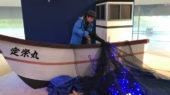 (期間限定)青く光る神秘の発光ショー「ほたるいかミュージアム」【富山】