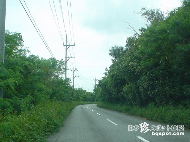 西表島ドライブ4