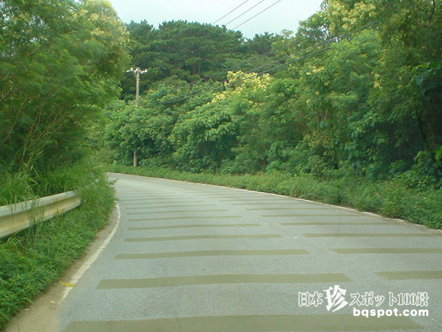 西表島ドライブ6