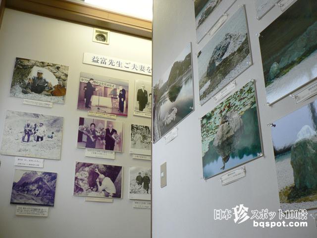 石ふしぎ博物館 益富地学会館