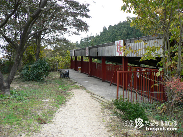 三重県 熊牧場