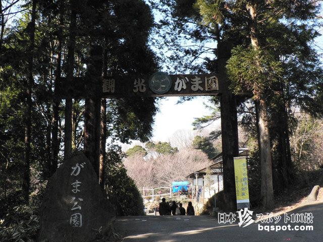 観光がま公園