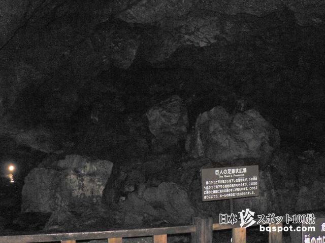 西湖蝙蝠(コウモリ)穴
