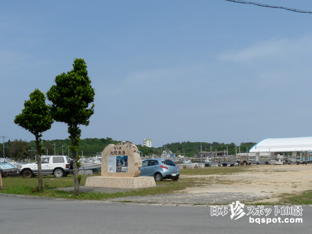 池間島のカツオ