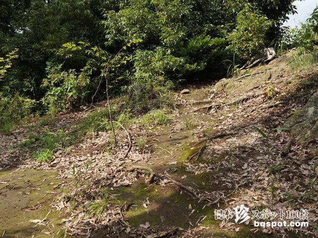 ポンポン山・高負彦根神社