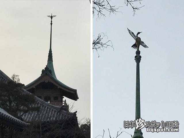 大雲院・銅閣寺